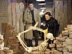 Photo Bones 14692 : bones
