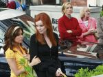 Photo Desperate Housewives 16526 : desperate-housewives