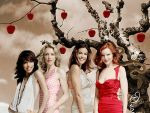 Photo Desperate Housewives 16600 : desperate-housewives