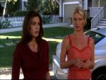 Photo Desperate Housewives 16738 : desperate-housewives