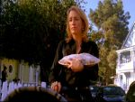 Photo Desperate Housewives 16749 : desperate-housewives