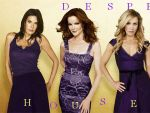 Photo Desperate Housewives 16788 : desperate-housewives