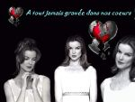 Photo Desperate Housewives 16798 : desperate-housewives