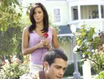 Photo Desperate Housewives 16810 : desperate-housewives