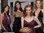 Photo Desperate Housewives 16837 : Desperate Housewives