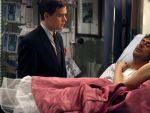 Photo Grey s Anatomy 20280 : grey-s-anatomy