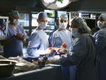 Photo Grey s Anatomy 20321 : grey-s-anatomy