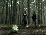 Photo Legend Of The Seeker 23364 : Legend Of The Seeker