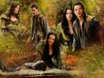 Photo Legend Of The Seeker 23966 : legend-of-the-seeker