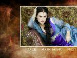 Photo Merlin 24447 : merlin