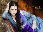 Photo Merlin 25168 : merlin