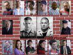 Photo Prison Break 26077 : prison-break