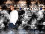 Photo Prison Break 26091 : prison-break