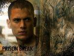 Photo Prison Break 26102 : prison-break