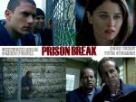 Photo Prison Break 26174 : Prison Break