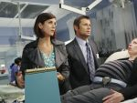 Photo Private Practice 26232 : private-practice