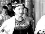 Photo The Tudors 28524 : the-tudors