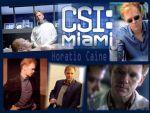 Photo Les Experts Miami 29297 : les-experts-miami