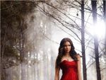 Photo The Vampire Diaries 30109 : the-vampire-diaries