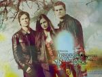 Photo The Vampire Diaries 30205 : The Vampire Diaries